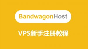 Bandwagon搬瓦工VPS注册和购买和使用教程